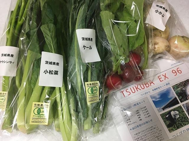 有機野菜が5品999円と安い!生協の産直「有機栽培野菜セット」はレシピもついておすすめ