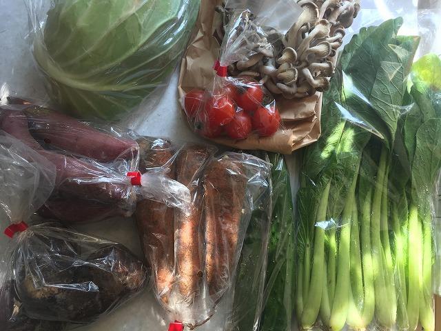 おうちコープのお得な野菜セット「グリーン・ボックス」を使って分かったメリット・デメリット